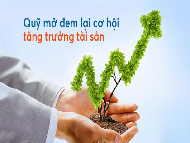 Quỹ đầu tư chứng khoán - giải pháp sinh lời hiệu quả