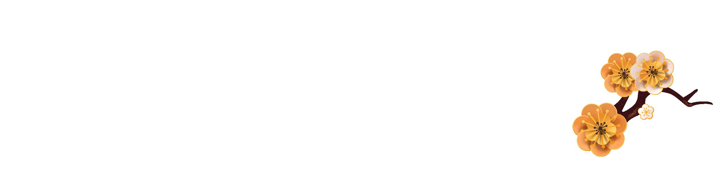 VNDirect