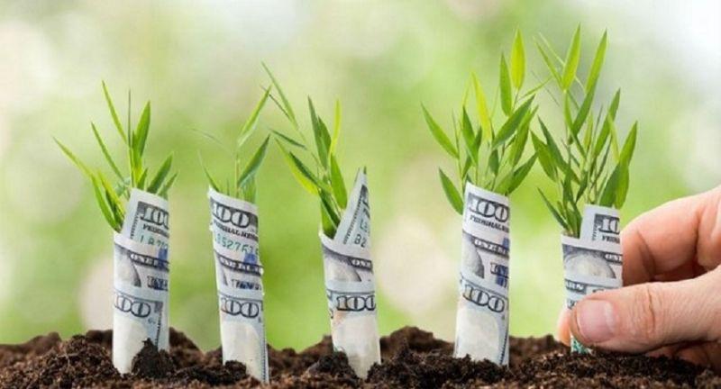 Quản trị tài chính cá nhân - kiếm tiền